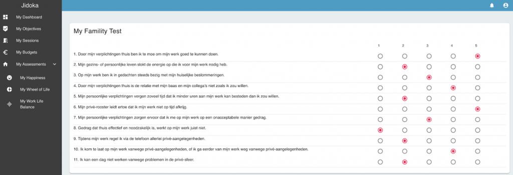 Een assessment voorbeeld op de coaching tool